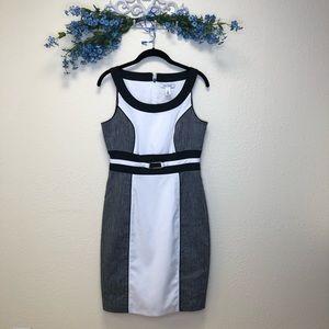 White House Black Market dress size 6 NWT